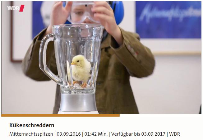 kuekenschreddern_wdr.png